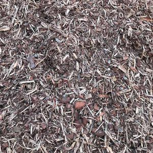 Pine Forest Mulch