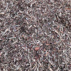 Pine Forest Mulch